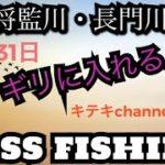 バス釣り!ギリッギリのところ攻めるんや!#バス釣り#魚釣り#アウトドア