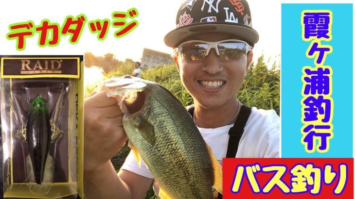 【バス釣り】霞水系 おかっぱり!デカダッチの動きが最高!そして諦め掛けたその時…