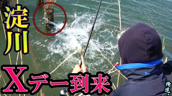 【春爆Xデー】水中に刺さった棒の横から…
