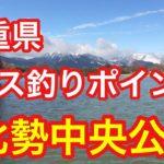 北勢中央公園  三重県 バス釣りポイント ブラックバス