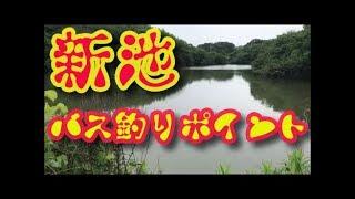 バス釣りポイント 新池 愛知県常滑市ブラックバス釣りポイント陸っぱり