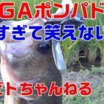 バス釣り#7【デカすぎ!メガポンパドール!!】