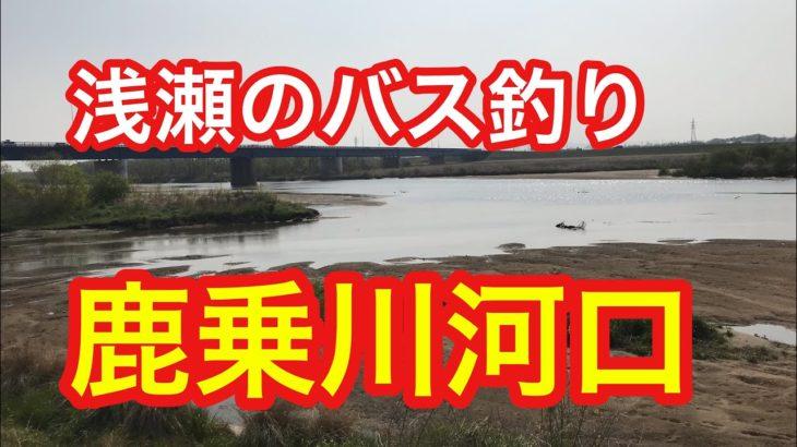 鹿乗川  浅瀬の川バス釣りポイント  ブラックバス