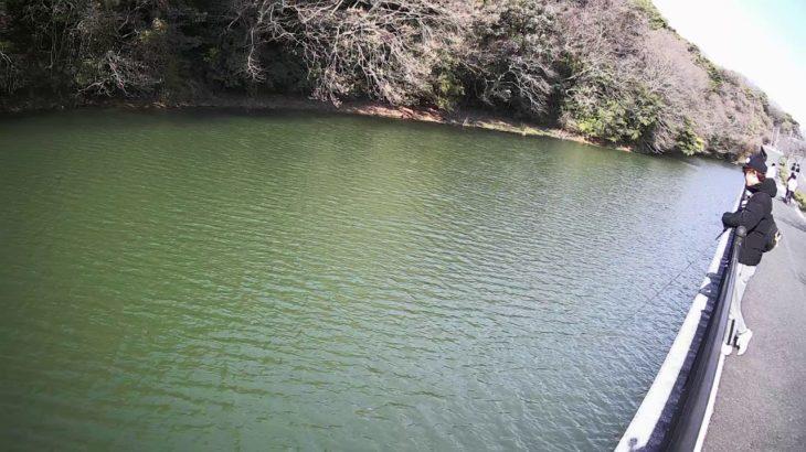 瀬板の森の横の池でブラックバス