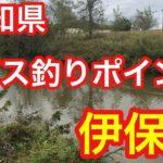 伊保川  愛知県 バス釣りポイント ブラックバス