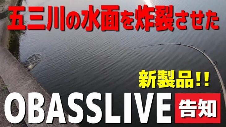 バス釣り/五三川の水面を炸裂させたバブルバック