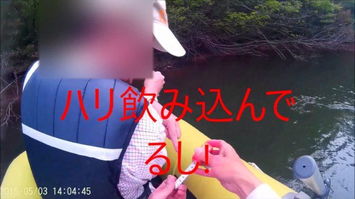 福井県福井市大芝山の池でブラックバス釣り