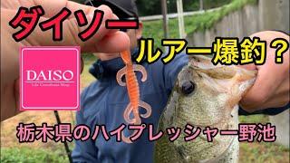 バス釣り 関東某所の野池にてダイソールアー縛りで釣れるのか検証