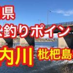 庄内川  枇杷島橋  愛知県 バス釣りポイント ブラックバス