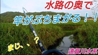 【バス釣り】水路の奥で竿がぶちまがる!【遠賀川水系】【遠賀川】【福岡】【フリックシェイク】【ジャッカル】【アブガルシア】