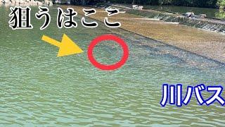 【バス釣り】中谷式!リバーバッシング!流れを読め!