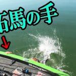 琵琶湖の巨大バスと激闘の末、カバーに向かって走られた次の瞬間…