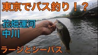 東京 都内でバスを釣る! 花畑運河 中川 バス釣り シーバス釣り