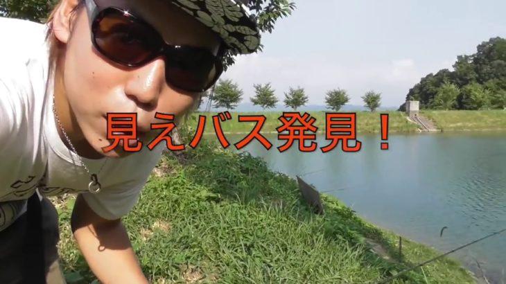 小糸川・千葉:50up!ブラックバス釣り:(フローター)2010.7.24