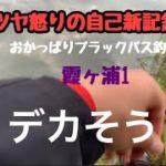 おかっぱりブラックバス釣り霞ヶ浦編1
