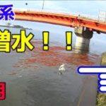 10月 台風後の霞ヶ浦釣行と様子。  バス釣り  霞水系