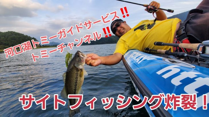 10月の河口湖バス釣り!!河口湖バス釣りガイド、トミーガイドサービスのサイトフィッシング炸裂!!
