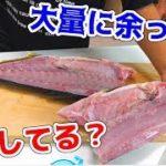 #2 食べ切れなかった時に役に立つ魚の保存方法!