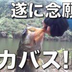 #2 バス釣り初心者が初めてデカバスに遭遇 / 魚切ダム / おかっぱり / 広島 / バスフィッシング / ZESTIEN