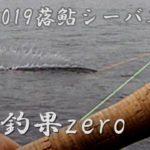 2019落ち鮎シーバス