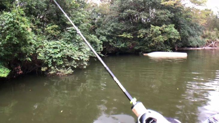 2019.10.6 亀山ダム釣行 バス釣り ※羽生カップチャリティートーナメント