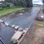 令和の釣り道楽 鮎釣り 2019年7月29日 川に立ちこまず鮎を釣る