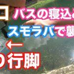 【山口】47都道府県釣り行脚【バス釣り】#1