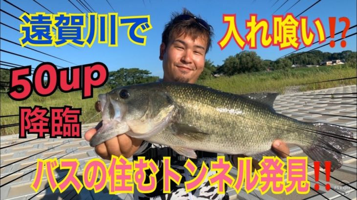 【バス釣り】遠賀川チョー人気エリアなのに、、⁉️ 50up出現確率アップ中🐟【bassfishing】
