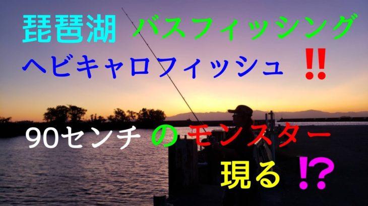 【バス釣り】琵琶湖でバスフィッシング ヘビキャロフィッシュ 90センチのモンスター現る!!