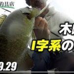 9月の木崎湖、I字系でバス釣り!