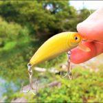 【釣り・Fishing】琵琶湖(野瀬川付近)でバス釣り@ニゴイが釣れるもバスの魚影は見えず【VLOG・ジョインテッドミノーと爆釣ルアー】