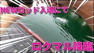 #琵琶湖#バス釣り【NEWロッド入魂にてロクマル降臨!!!】