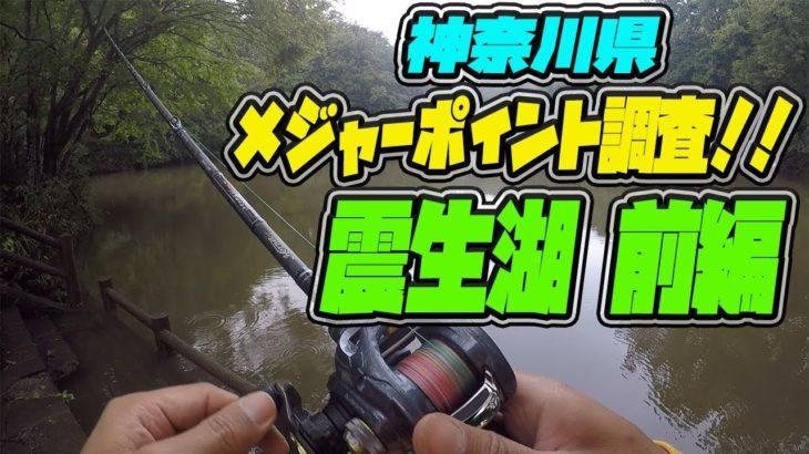 メジャー P 調査!震生湖 前編!!ブラックバス釣り