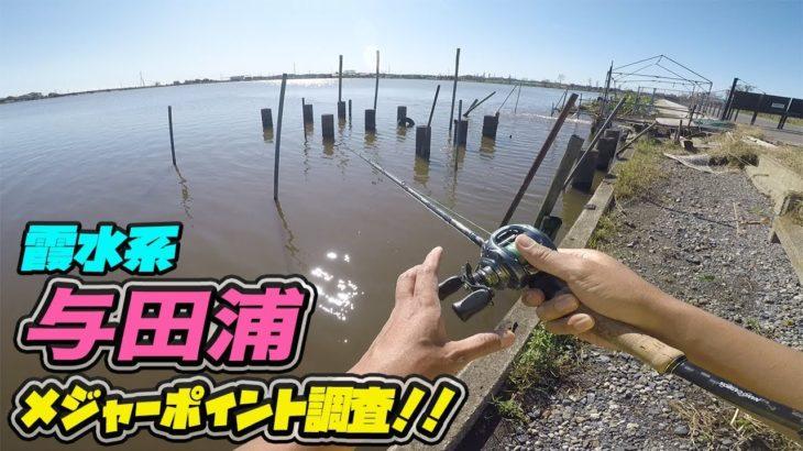 メジャー P 調査!霞水系 与田浦! ブラックバス釣り