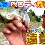 【バス釣り】遊歩:遠賀川 秋は巻物!ベロディ炸裂!(UFOガイド)