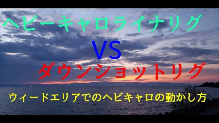 【バス釣り】ヘビーキャロライナリグVSダウンショットリグ