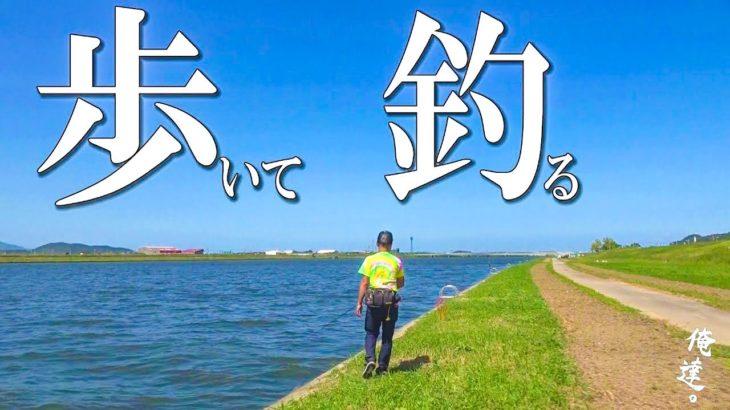 【検証】12キロの距離を歩いたら何匹釣れるのか?