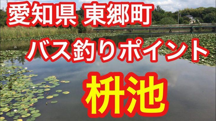 枡池 愛知県 東郷町 バス釣りポイント ブラックバス