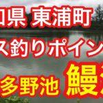 鰻池 愛知県 東浦町 バス釣りポイント ブラックバス