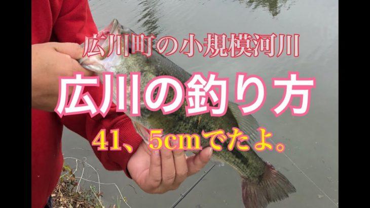 【バス釣り】広川町の川の釣り方