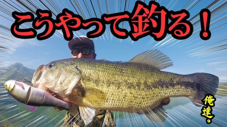 帰る、と見せかけて魚を油断させて釣る!【富士五湖遠征釣行】