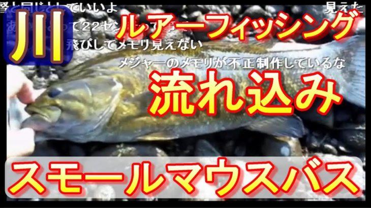 【釣り】スモールマウスバス釣り、流れ込みをルアーで狙います