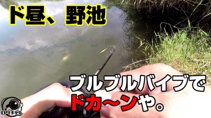【バス釣り 野池 岐阜】海から野池。こんな時間にどうすれば釣れる!?
