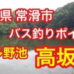 高坂池 愛知県 常滑市 バス釣りポイント ブラックバス 知多野池