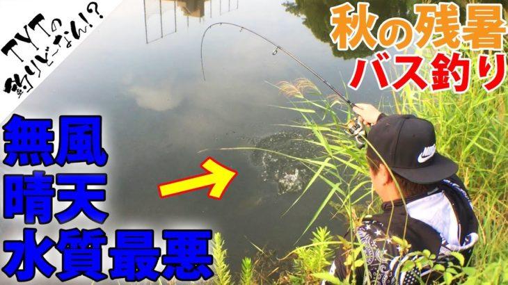 【バス釣り 秋】悪条件の野池での釣り方