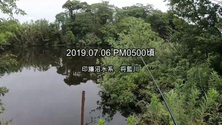 印旛沼水系 バスフィッシング①