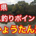 ひょうたん池  愛知県 バス釣りポイント ブラックバス