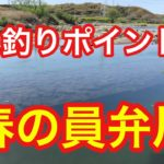 春の員弁川  バス釣りポイント  ブラックバス