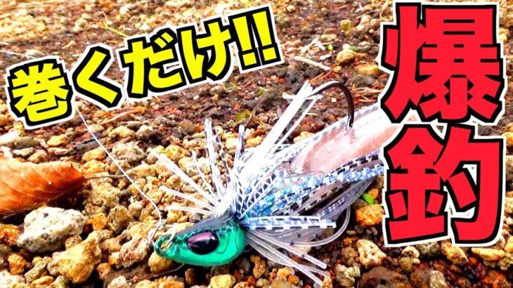 秋のバス釣りオススメ!巻くだけ簡単スイムジグで入食祭り!