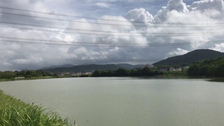 大久手池 ブラックバス釣りポイント 愛知県 バス釣り
